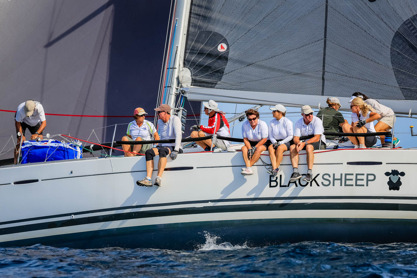Black Sheep - Hicko Shield receipients for Sail Port Stephens 2016. Photo Saltwater Images.
