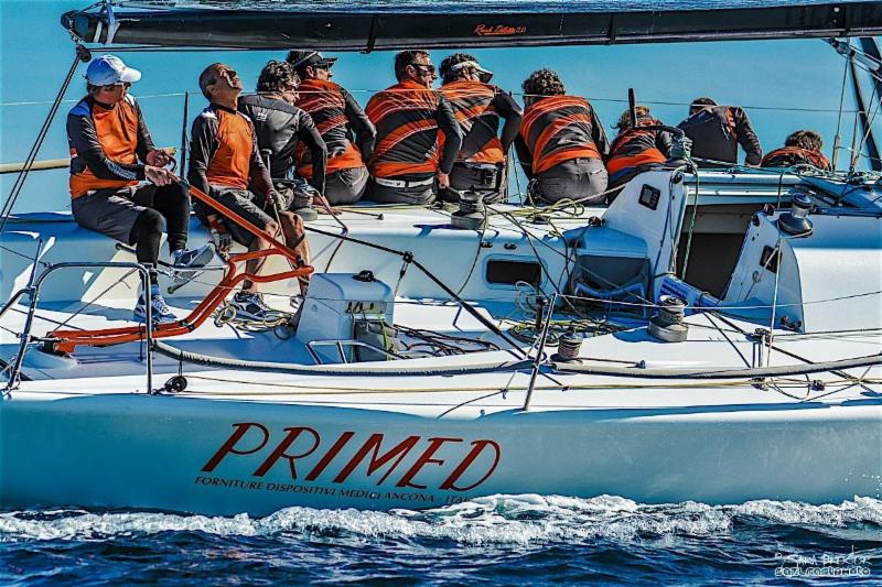 Skipper Mauro Mocchegiani is the picture of concentration as he steers Rush Diletta during the D-Marin Farr 40 Sibenik Regatta that concluded Saturday. Photo Farr 40 Assn.