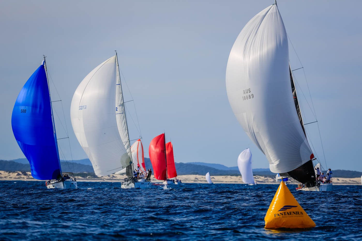 Spinnakers on the bay at Sail Port Stephens. Photo Saltwater Images.