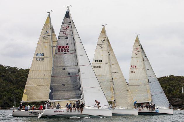 Sydney 38s. Photo Andrea Francolini.