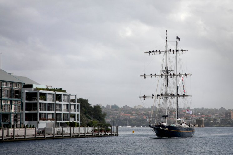 Training Ship Young Endeavour returns to Fleet Base East