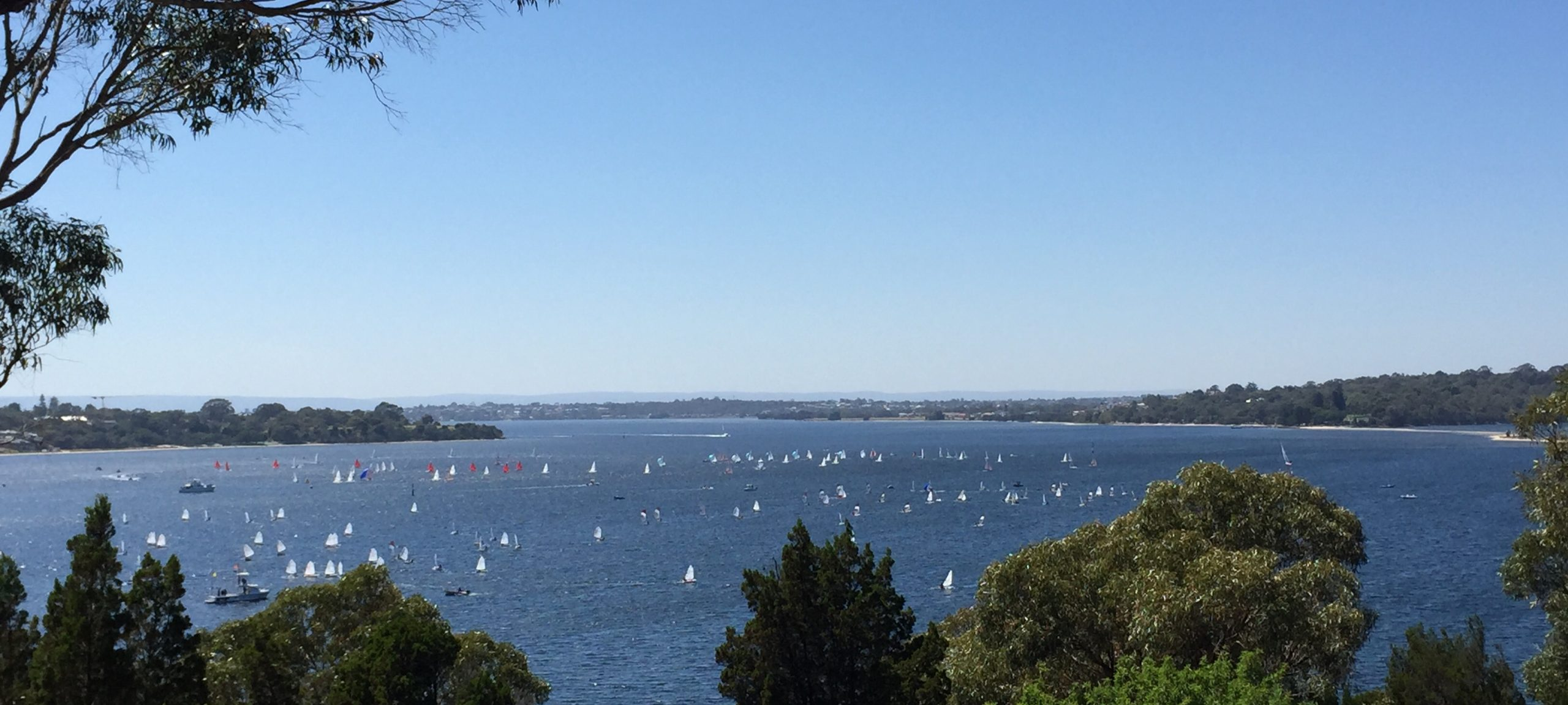 An-overview-of-racing-on-Freshwater-Bay---RFBYC-pic-
