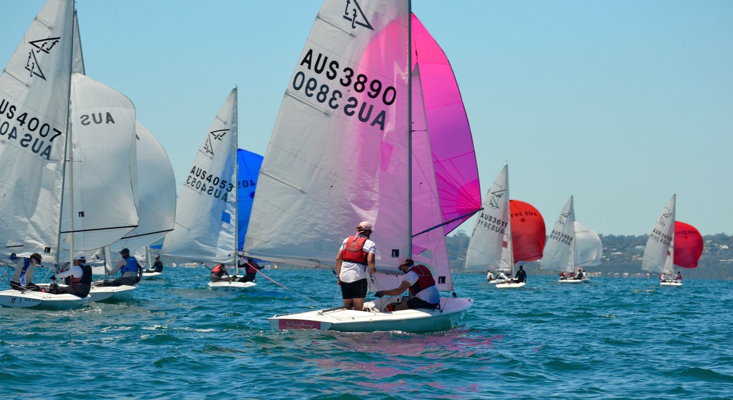 Going-gets-light-downwind---Sonja-Dowdle-pic