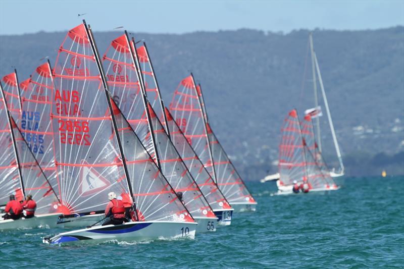 Tasars-sailing-at-an-Australian-Championship---Russell-Bates-pic