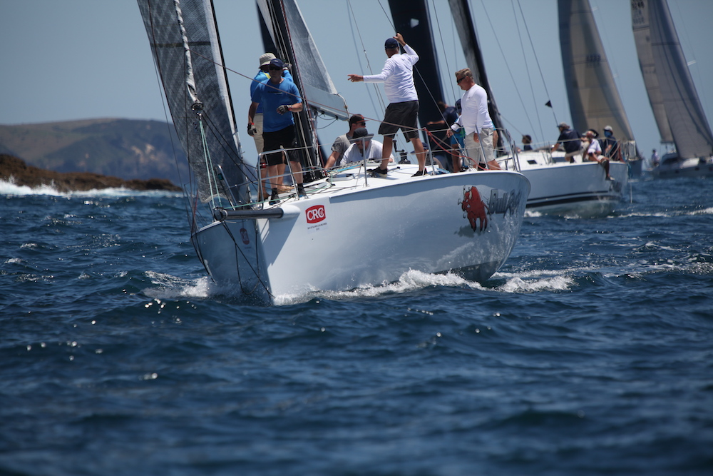 Bay of Island Sailing Week. Photo Will Calver.
