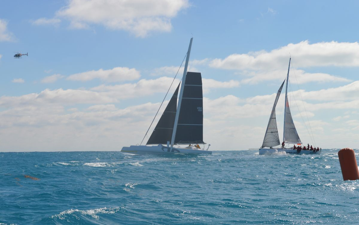 Argo at the start of the Pineapple Cup. Photo Credit: Manuka SEM.
