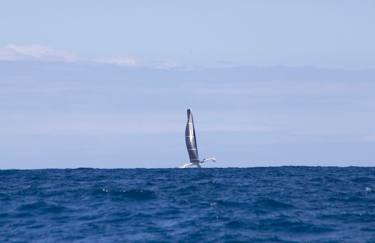 Argo sets a new record in the Pineapple Cup - Montego Bay Race. credit Pineapple Cup/Edward Downer.