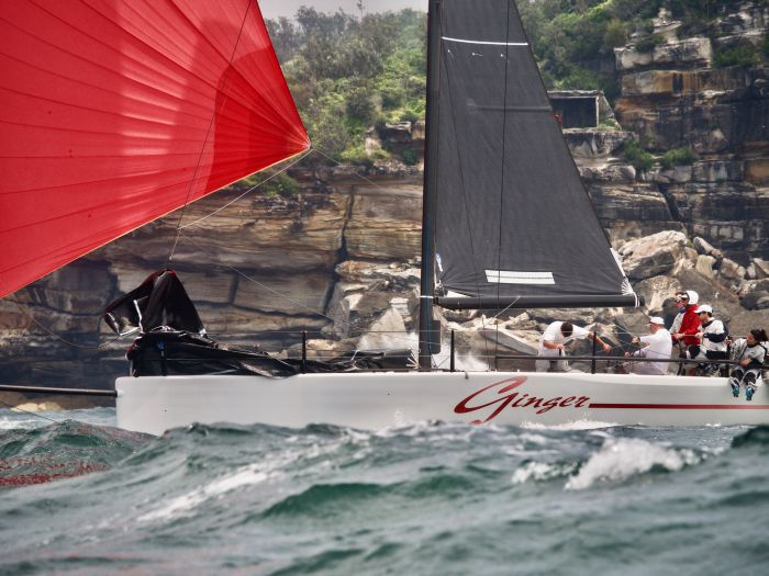 Ginger at Sydney Heads small. Photo credit Tilly Lock Media.