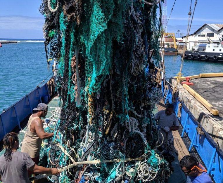 Photo Ocean Voyages Institute.