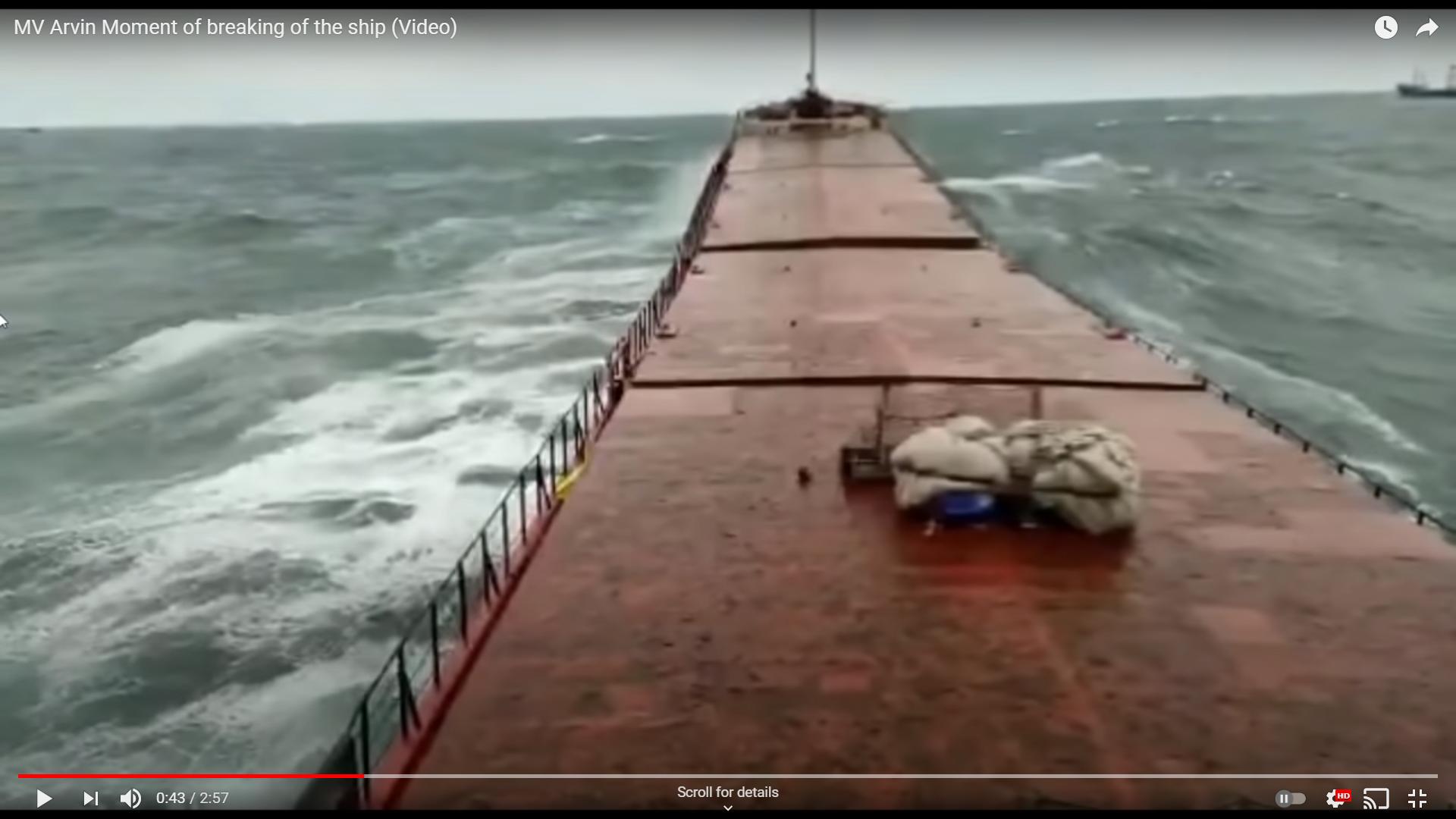 Palau-flagged cargo ship MV Arvin sinks off Turkey's Black Sea coast