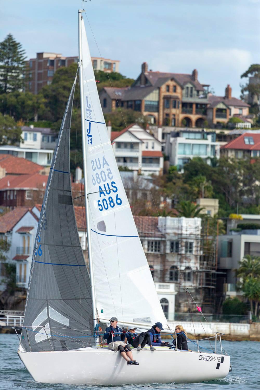 J24 sailing