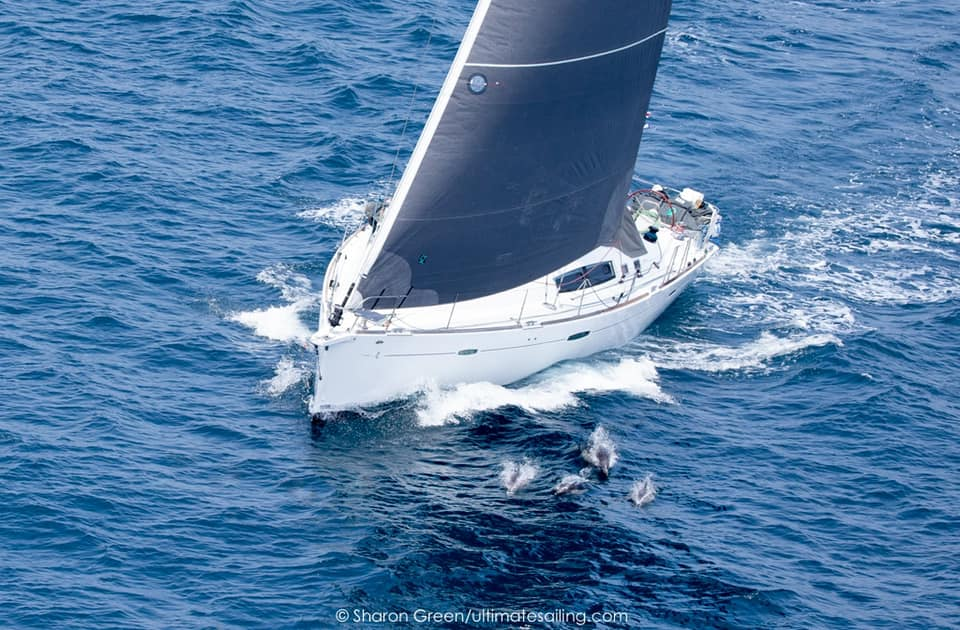 Birds eye view of yacht sailing with dolphins at the bow