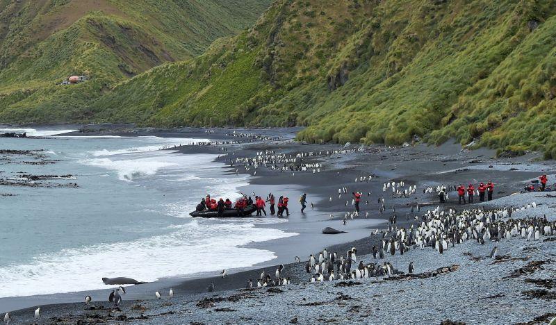 Sub Antarctic Islands. Photo © PONANT Nathalie Michel.