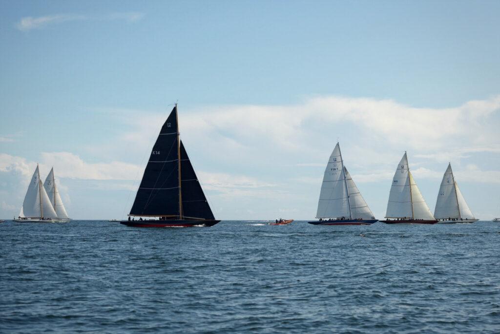 The fleet sailing upwind