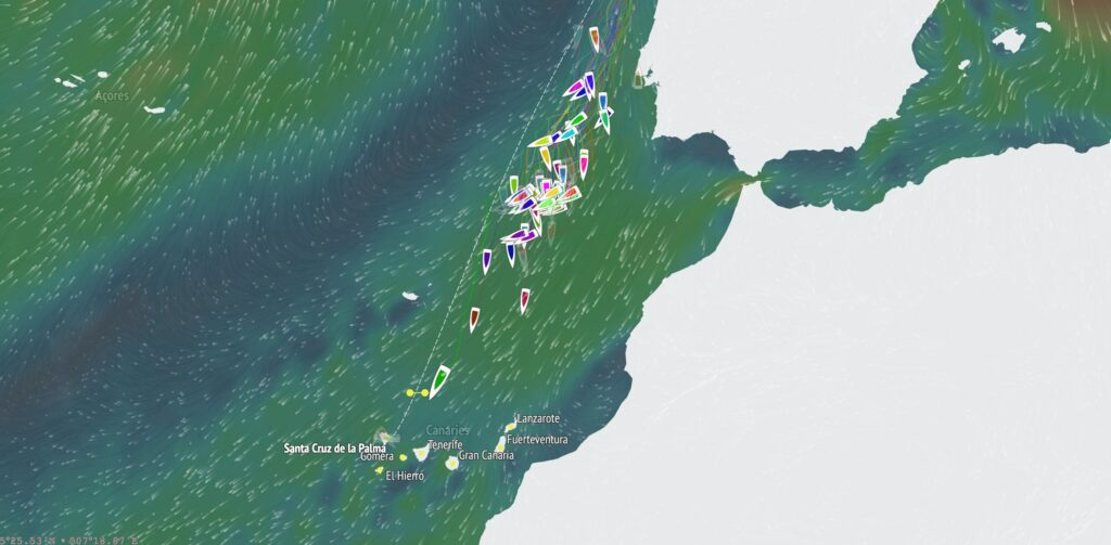 Screen shot of the tracker, showing Melwin Fink with a big lead over the rest of the fleet.