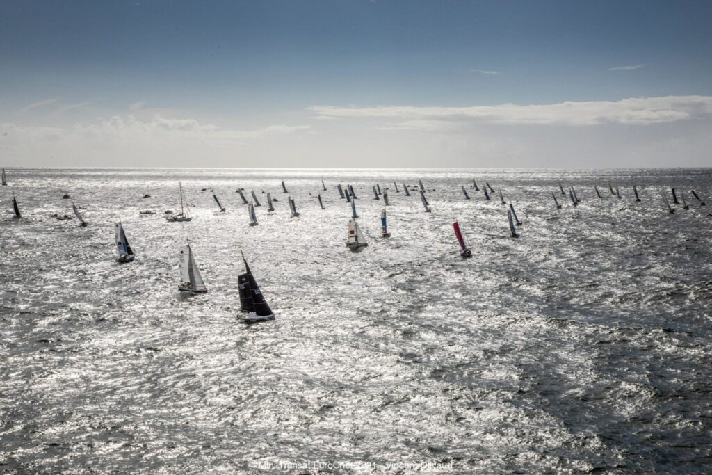 Aerial shot of fleet sailing